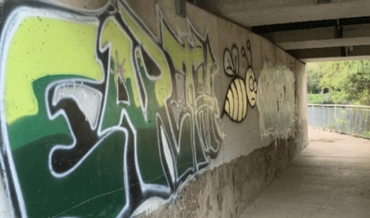 Taggers Spray Graffiti Across Towpath Park Wall