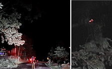 Tree Fall Sparks Electrical Fire Early Wednesday